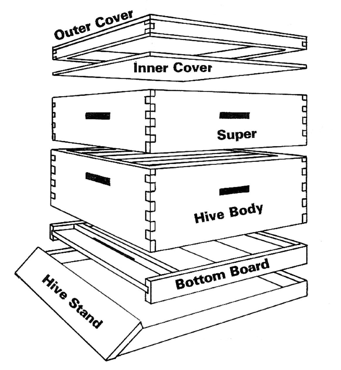 honey bee hive plans