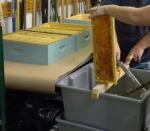 De-capping honey frames using a cold knife.